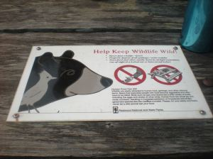 wildlife warnings