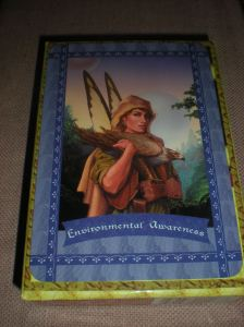 oracle cards, environmental issues