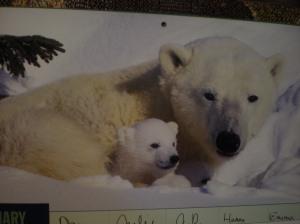 animal calendars, family planners