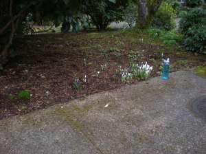 Eugene spring scene