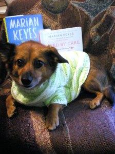 dogs and books, marian keyes, the mystery of mercy close, saved by cake