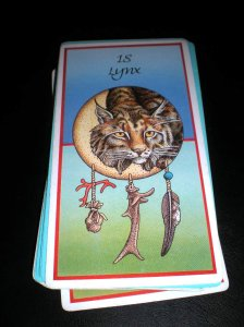 animal cards and messages, lynx medicine