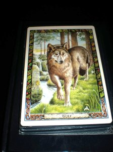 animal cards and messages