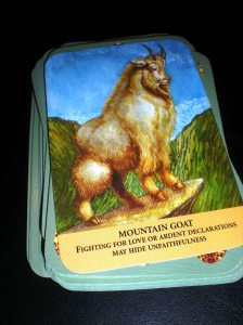 animal cards, mountain goat messages