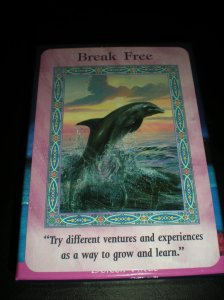 mermaids and dolphins, oracle cards