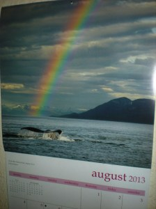 rainbows and whales