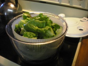 home-grown lettuces, salad spinner
