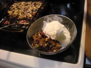 home-made fruit crisp