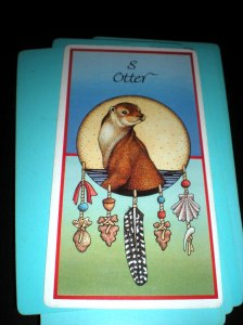 animal messages, oracle cards, otter