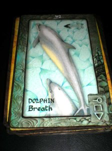 animal cards, dolphin messages