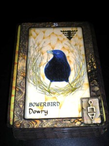 animal cards, oracle birthday messages