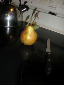 pears in the vineyard