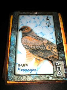 animal dreaming cards, hawk message, oracle cards, australian oracles