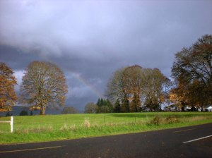 rainbows, pleasant hill