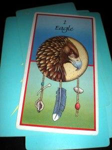animal messages, spirit, eagle