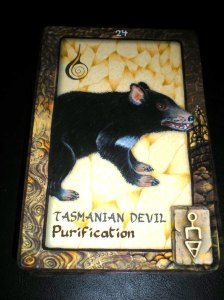 tasmanian devil, purification messages, oracle cards