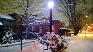 eugene in the snow