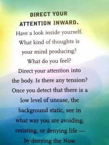 oracle cards, the power of now, eckhart tolle