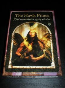 oracle cards, hawk prince, spirit messages