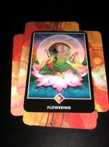 alternative tarot cards, osho zen, oracle cards, queen of rainbows, queen of pentacles