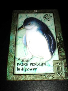 oracle cards, animal messages, fairy penquin
