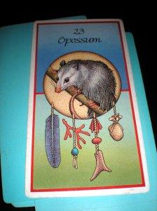animal cards, possum messages