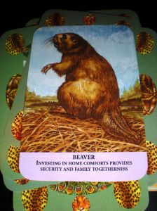 animal messages, beaver state, oracle cards