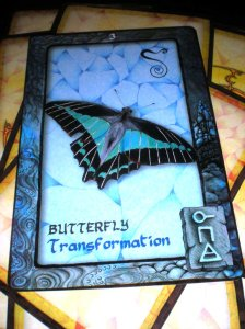animal messages, oracle cards, butterfly, transformation