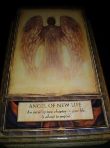 oracle cards, angel messages