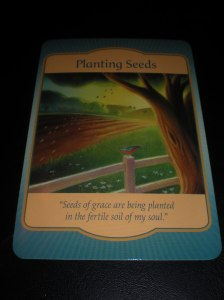 oracle cards, denise linn, planting seeds
