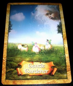 oracle cards, Gentle Gardner, working together
