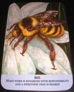 oracle cards, animal messages, bee symbolism