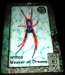 animal messages, spider is the weaver of dreams, dad's birthday, Australia dreaming