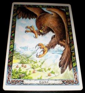 animal messages, eagle symbolism