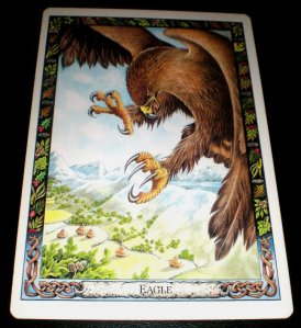 animal messages, eagle symbolism