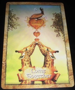 oracle cards, togetherness messages