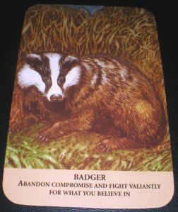 oracle cards, animal messages, badger