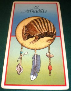 oracle cards, animal messages, armadillo,