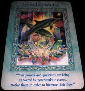 oracle cards, mermaid and dolphin messages, synchronicity,