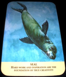 animal messages, oracle cards, seal symbology