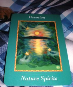 oracle cards, sonia choquette, devotion, ask your guides