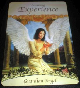 learning experience guardian angel