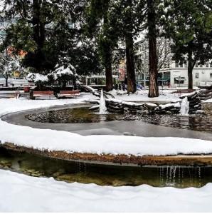 winter love and gratitude